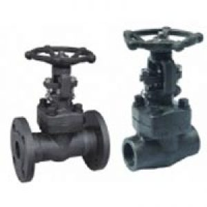 Forge-Steel-Bolted-Bonnet-Gate-Valve