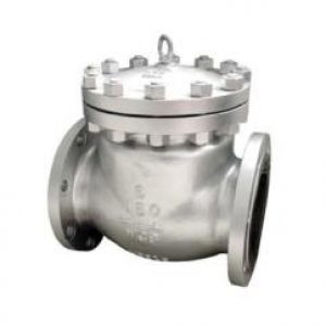 a216-wcb-bolted-bonnet-swing-check-valve-non-return-2