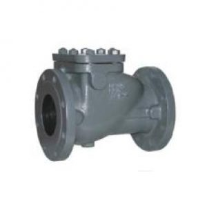 cast-iron-bolted-bonnet-swing-check-valve-flanged-end-2